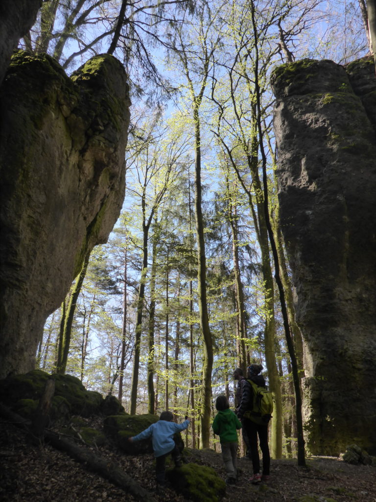 Felsentor im Wald bei Lungsdorf
